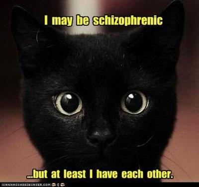 la schizophr nie n est pas un d doublement de la personnalit blogschizo. Black Bedroom Furniture Sets. Home Design Ideas
